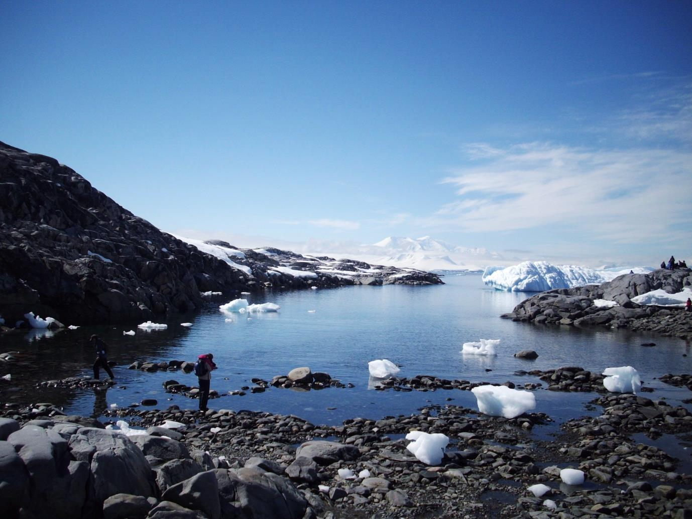 antarctica booth island 2
