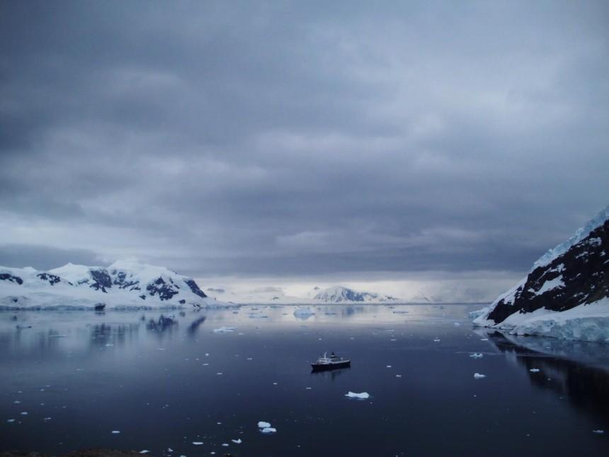 The MV Lyubov Orlova, on Neko Harbor, viewed from mainland Antarctica.
